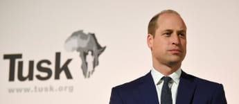Prince William, Duke of Cambridge speaks during The Tusk Conservation Awards ceremony in London on November 21, 2019.