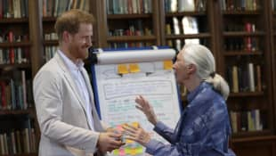 """Jane Goodall Says She's Not """"Best Friends"""" With Meghan & Prince Harry, Despite Reports"""