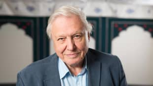 'Planet Earth': David Attenborough's Career Highlights