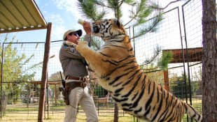'Tiger King': A New 'Investigating Joe Exotic' Sequel Special Is Coming Soon