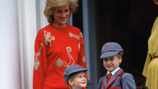 Princess Diana, Prince Harry and Prince William