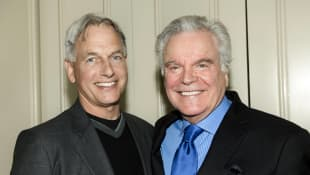 "NCIS Season 17: Robert Wagner will return as ""Tony DiNozzo Senior"" soon!"