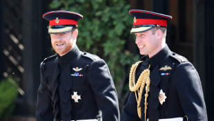 Prince Harry and Prince William are splitting joint royal household