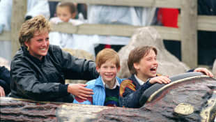 Prince William and Prince Harry Announce Their Statue Of Princess Diana Will Be Unveiled On This Meaningful Day