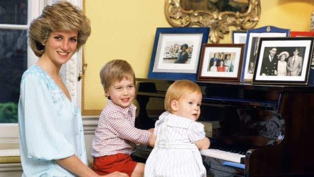 Lady Diana Prince William Prince Harry