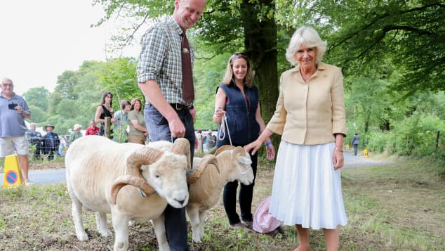 Duchess Camilla posing with some animals on her 72nd birthday