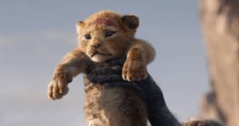 """Simba"" in the 2019 remake of The Lion King."