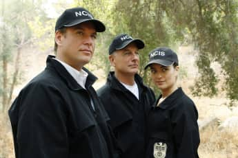 Michael Weatherly, Mark Harmon and Cote de Pablo
