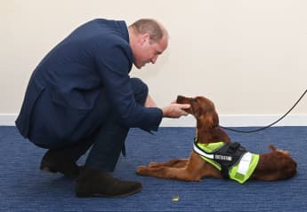 Prince William Visit North Ireland Pictures 2020 dog
