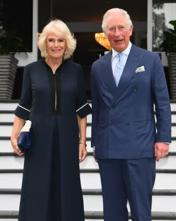 Prince Charles & Camilla Release New Photo On Wedding Anniversary
