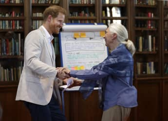 Prince Harry and Jane Goodall on July 23rd, 2019