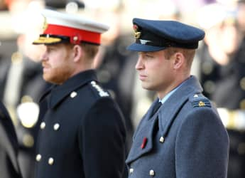 "Prince William and Prince Harry have become ""separate entities"" over the last years."